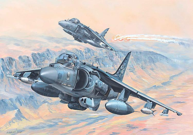 AV-8B Harrier II in 1:18  ***BAUSATZ***